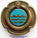 Water Rescue Badge
